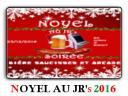Noyel2016